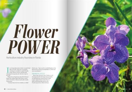flower power freshfromflorida.png